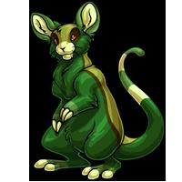 lime adult