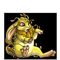 lemon baby